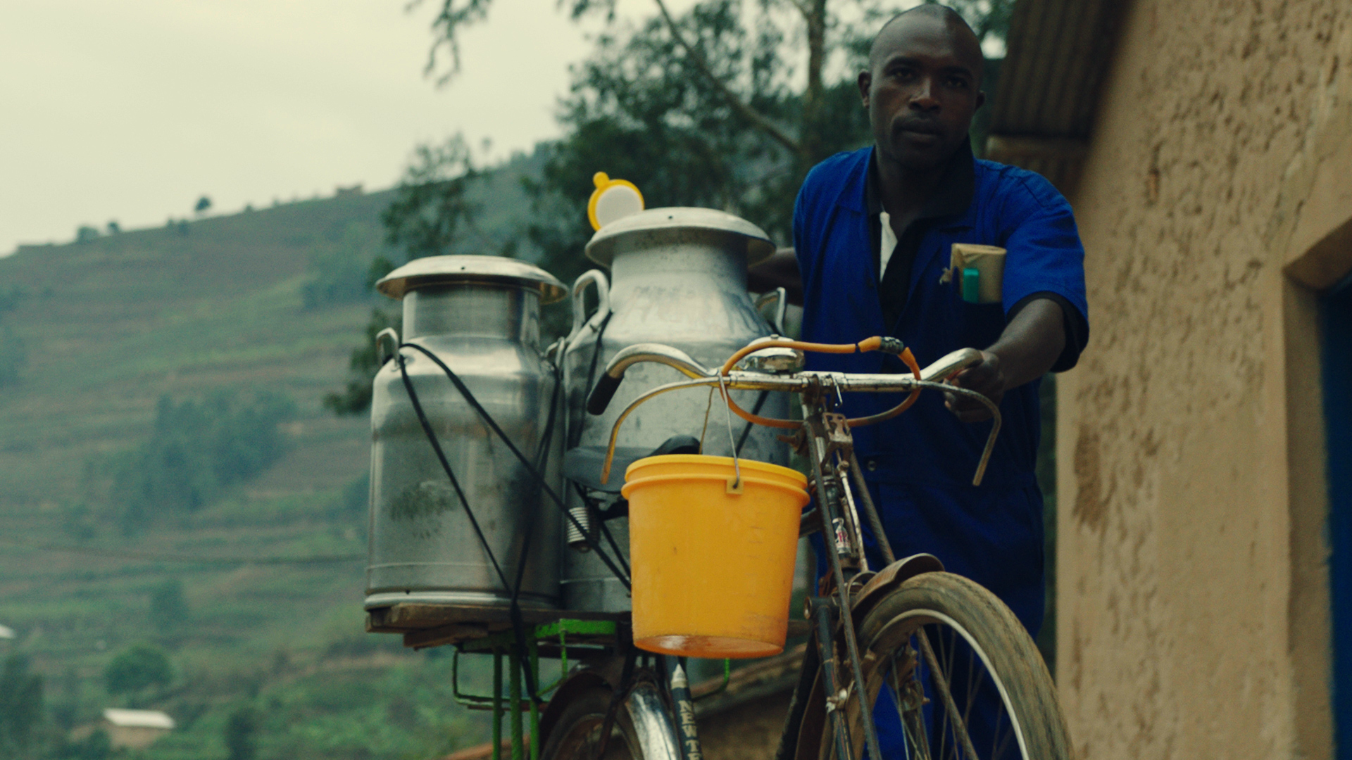 A man pushes a bicycle with milk canisters