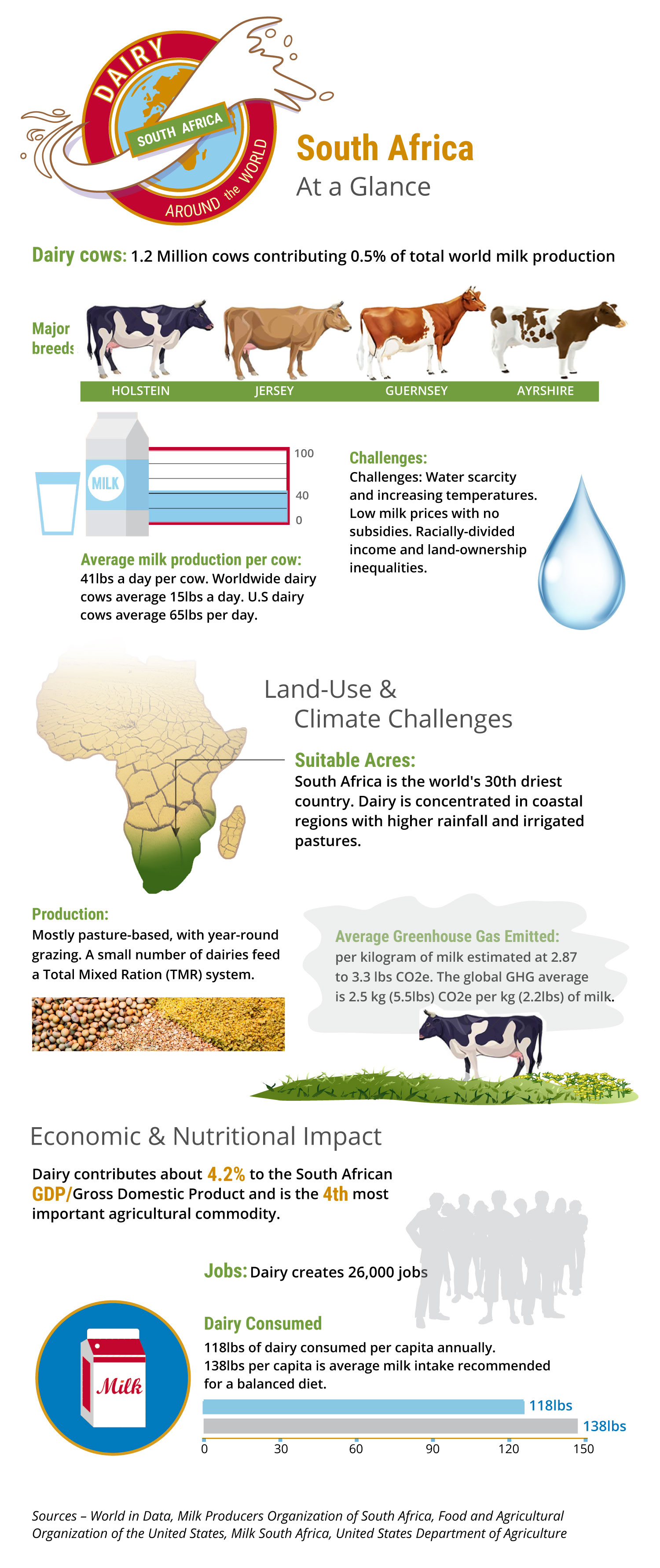 Large Daily Churn Infographic of Dairy's Impact in South Africa
