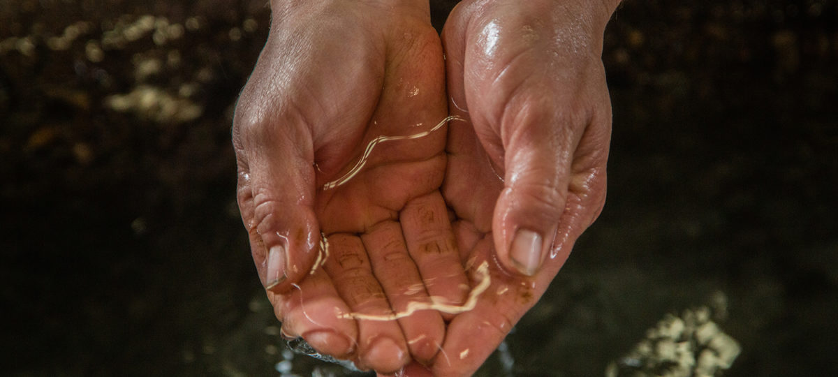Woman cupping water in her hands