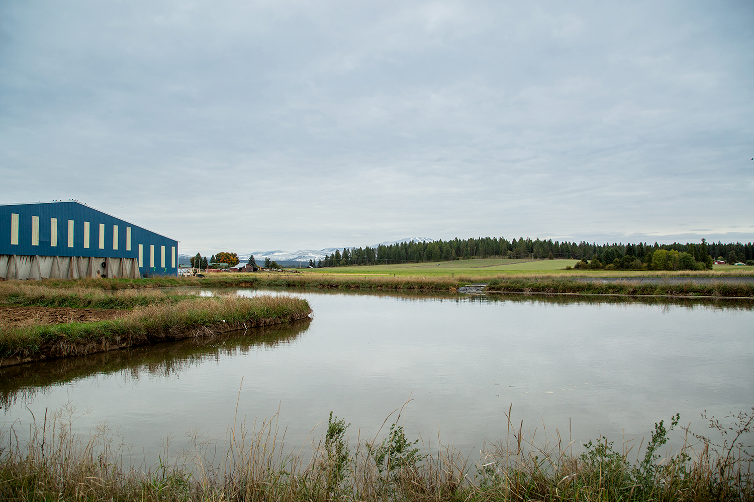 Water lagoon and barn on an overcast day
