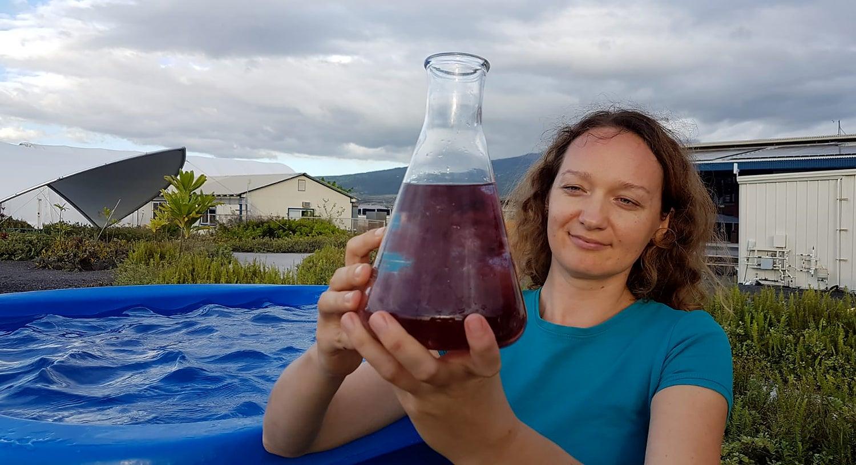 Women holding a giant flask of red macro algae