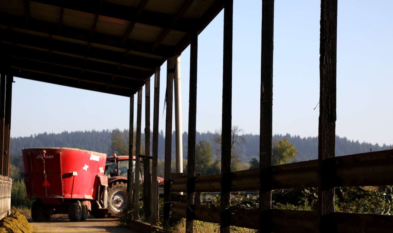 A bright red feed truck drives through a barn