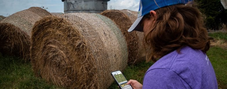Women using app with hay in the background