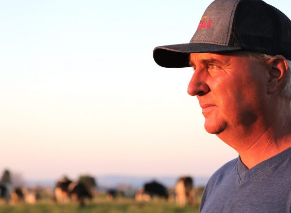 Portrait of an Oregon dairy farmer standing in front of pastured cows at sunset