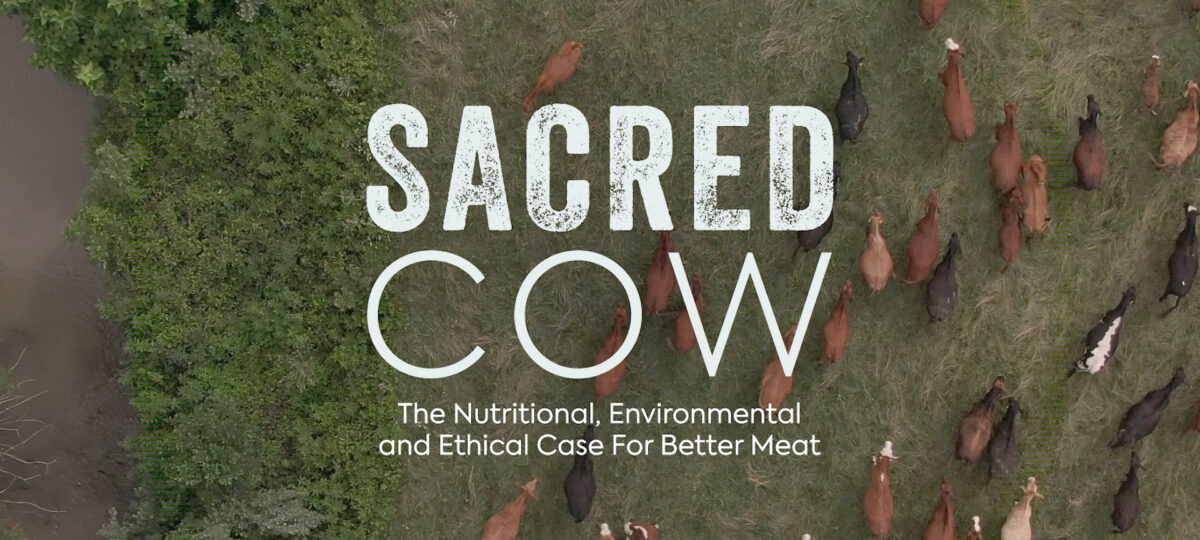 Aerial shot of cows on grass with white text