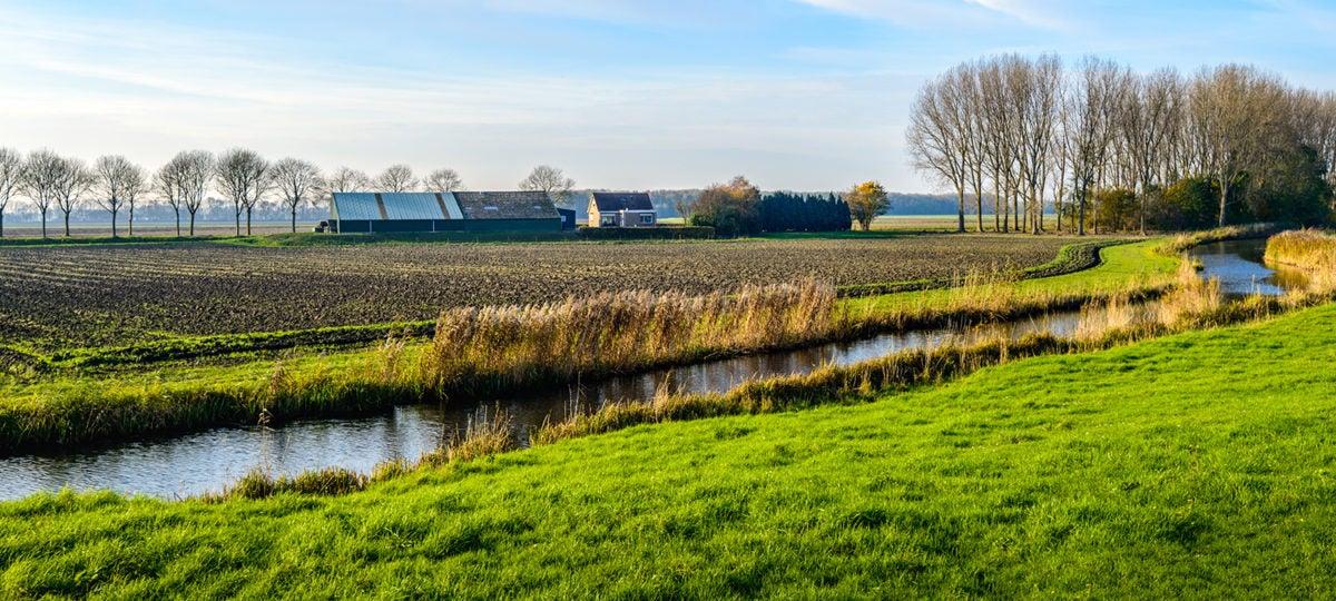River landscape stock photo