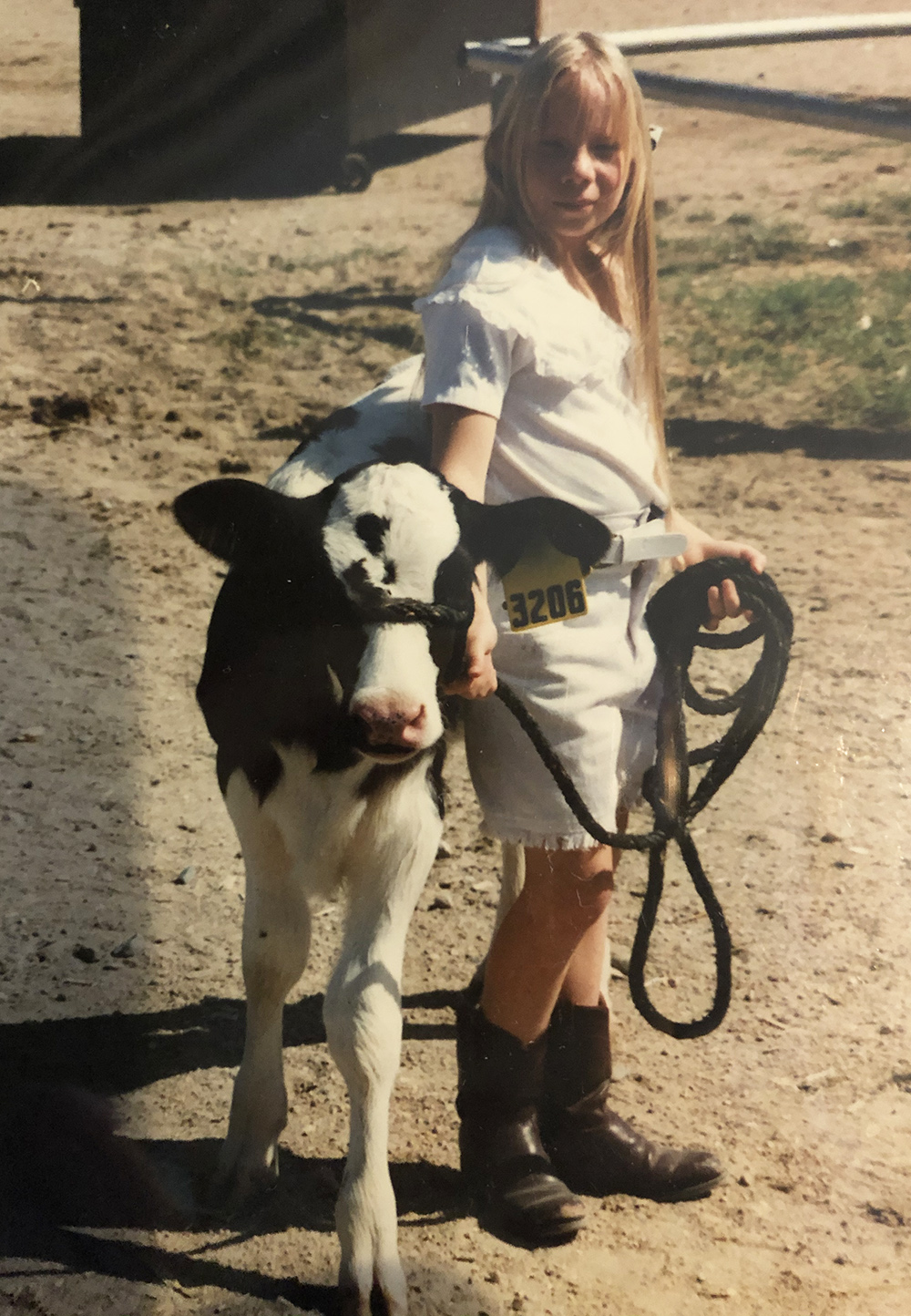 Vintage photo of a young girl with a cow calf