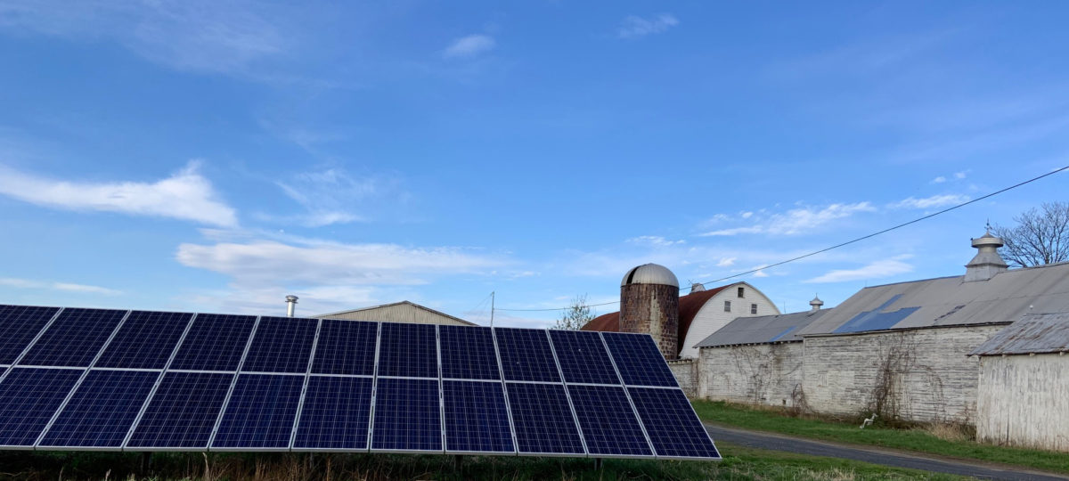 Solar panels on a dairy farm